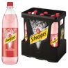 Schweppes Russian Wild Berry